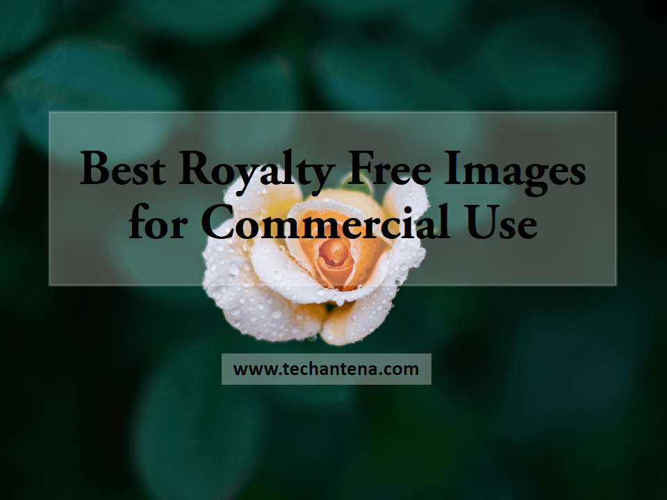 royalty free images for commercial use